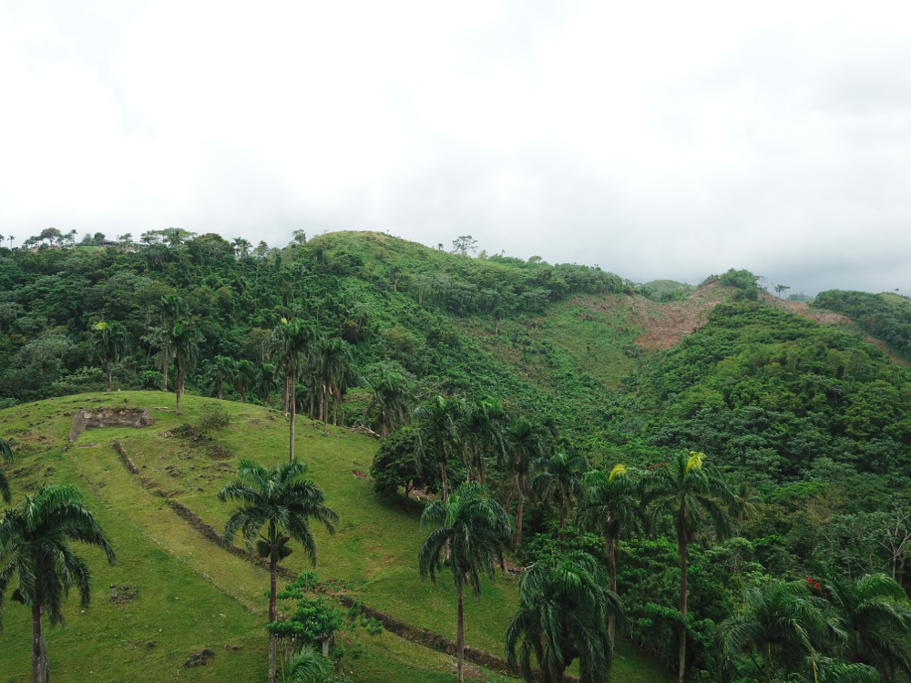 Loma land for sale las terrenas 8.png