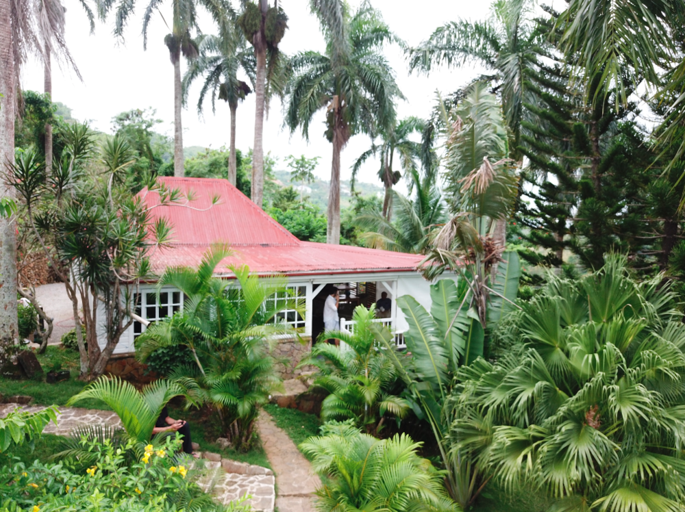 Loma land for sale las terrenas 6.png
