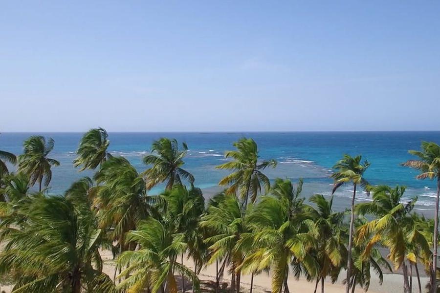 for sale dominican-republic-las-terrenas-playa-bonita-beachfront-land-for-sale-5-1152x600.jpg