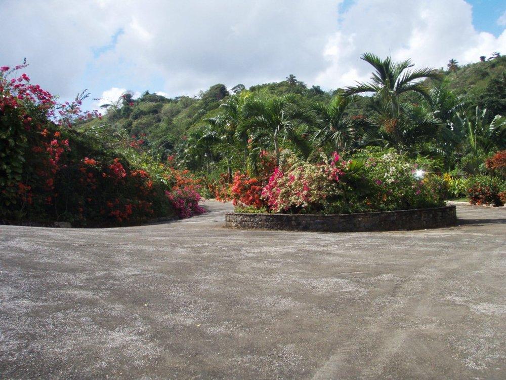Entrance to Las Palmas Tropical.JPG