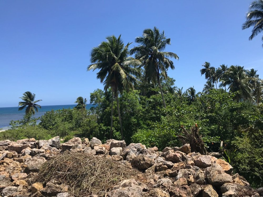 Ocean front Land for sale in Portillo 21.jpeg
