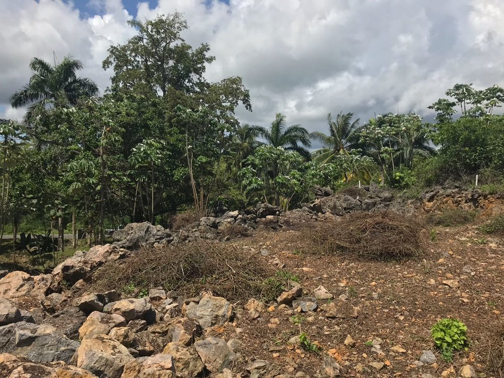 Ocean front Land for sale in Portillo 23.jpeg