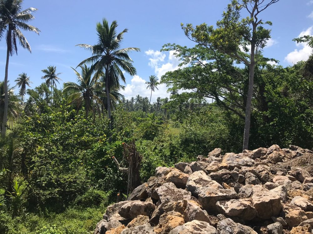 Ocean front Land for sale in Portillo 26.jpeg