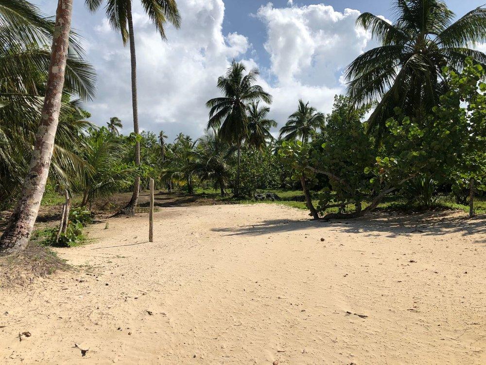 Beachfront land in for sale in Las Terrenas 3.jpeg