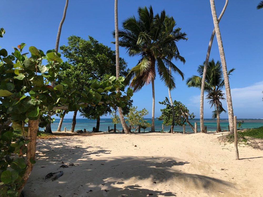 Beachfront land in for sale in Las Terrenas 4.jpeg