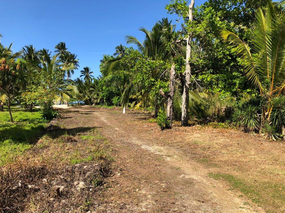 Beachfront land in for sale in Las Terrenas 5.jpeg