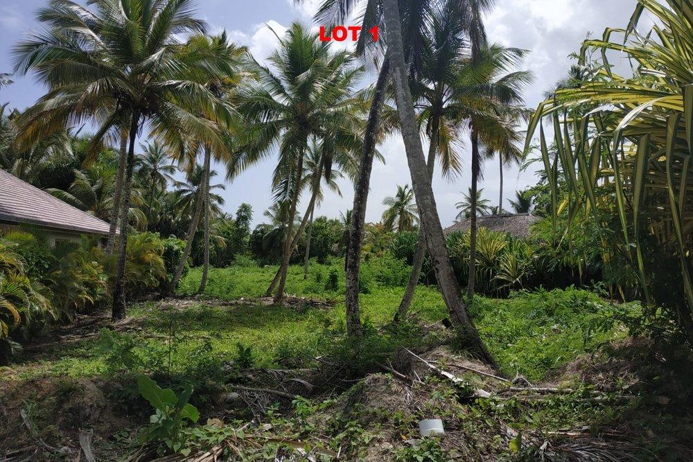 1 Land las terrenas los nomadas for sale 2.jpeg