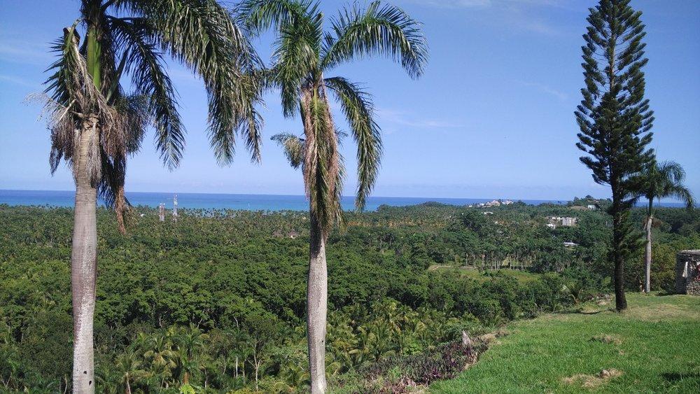 Hill for sale in Las Terrenas Dominican republic 1.jpeg