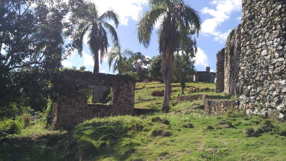 Hill for sale in Las Terrenas Dominican republic.jpeg