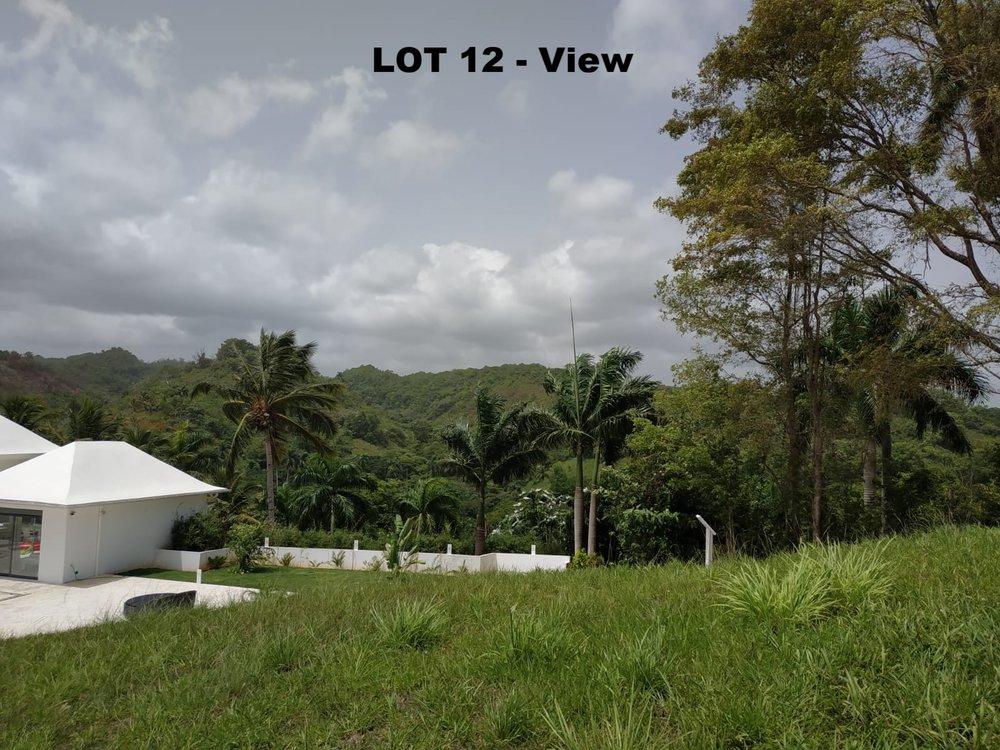 Land to build villa in Las Terrenas DR4.jpeg