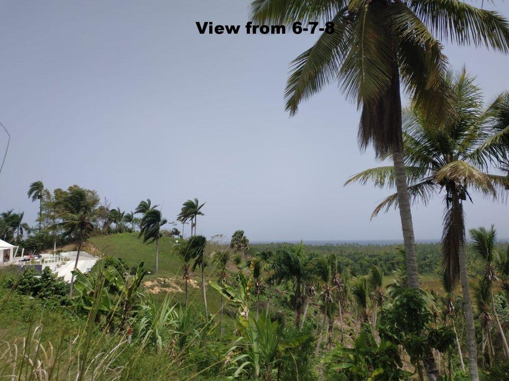 Land to build villa in Las Terrenas DR20.jpeg