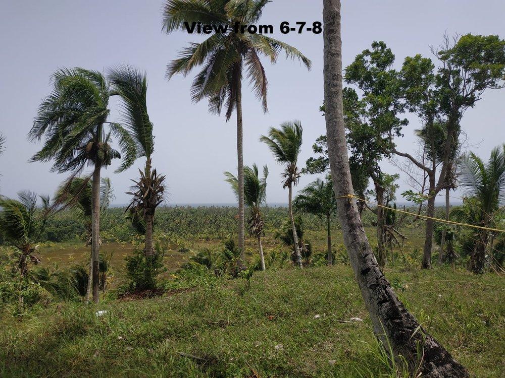 Land to build villa in Las Terrenas DR23.jpeg