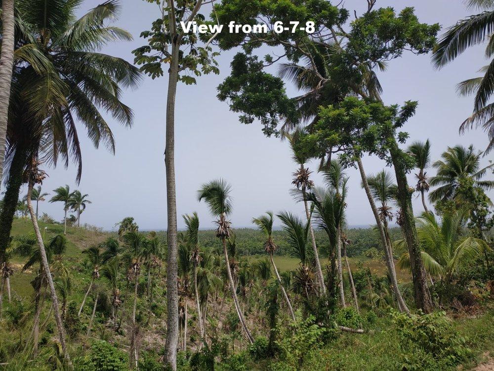 Land to build villa in Las Terrenas DR24.jpeg