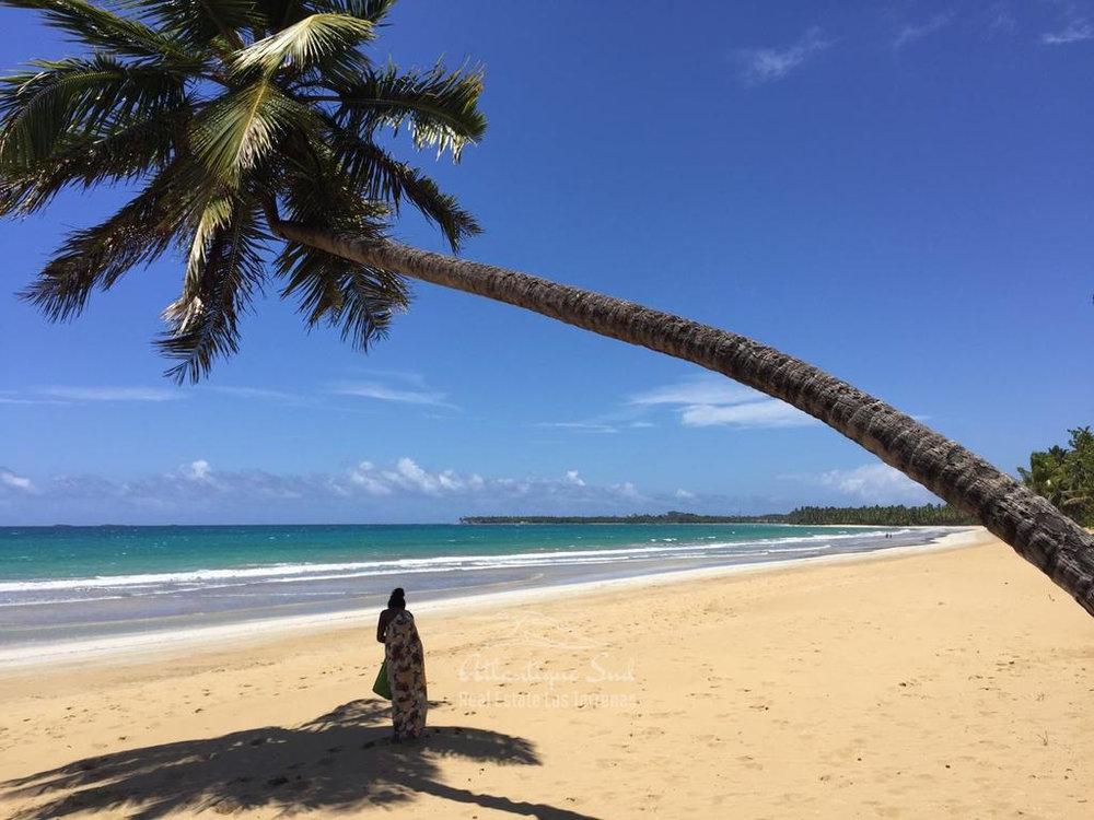 Beachfront condos for sale Las terrenas Playa Cosón10.jpg