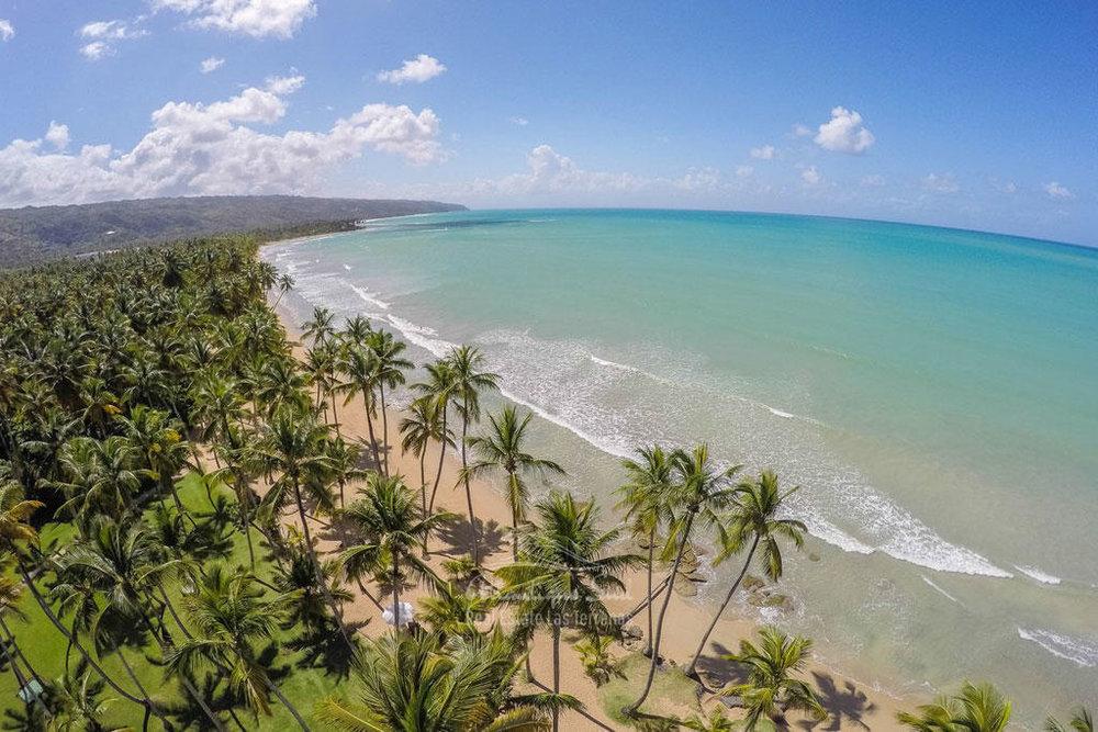 Beachfront condos for sale Las terrenas Playa Cosón20.jpg