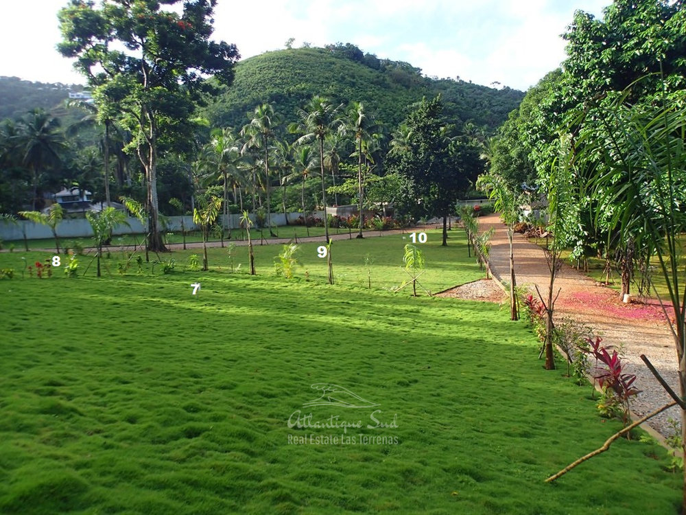 Ready to build lands for sale in Las Terrenas Real Estate Dominican Republic16.jpg