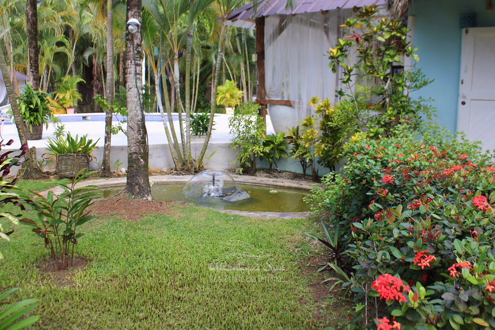 Domain of main villa with 5 separate bungalows ideal for bed & breakfast in Las Terrenas Real Estate Dominican Republic29.jpg