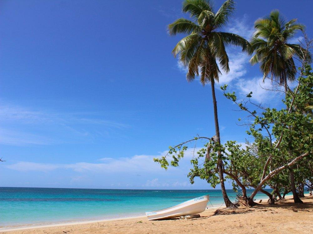 Playa Popy beach Las Terrenas.jpeg