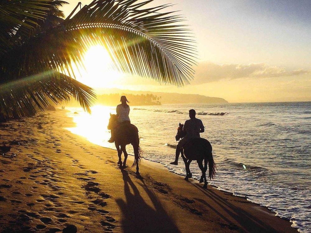 Activities & things in las terrenas horseback riding.jpg