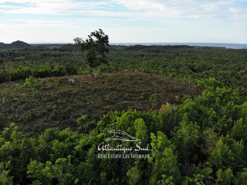 Barbacoa Land for Sale Samana 15.jpeg
