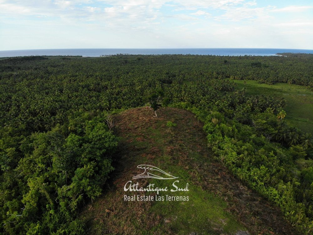 Barbacoa Land for Sale Samana 22.jpeg