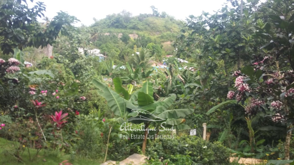 Charming villa and guest apartment in tropical garden Real Estate Las Terrenas Dominican Republic16.jpeg