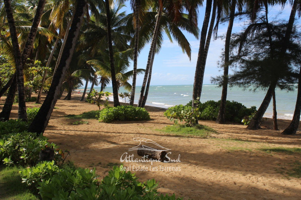 Comfortable apartment beachfront in tropical garden Real Estate Las Terrenas Dominican Republic2.jpeg