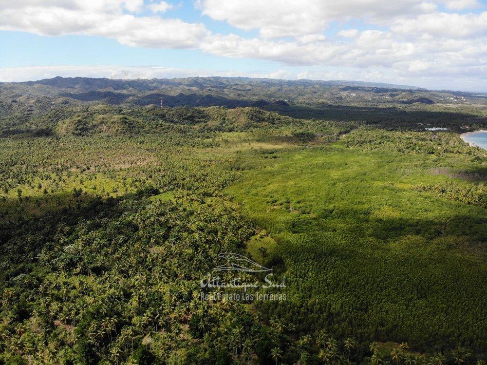 Land for sale El Limon Las Terrenas DR 4.jpeg