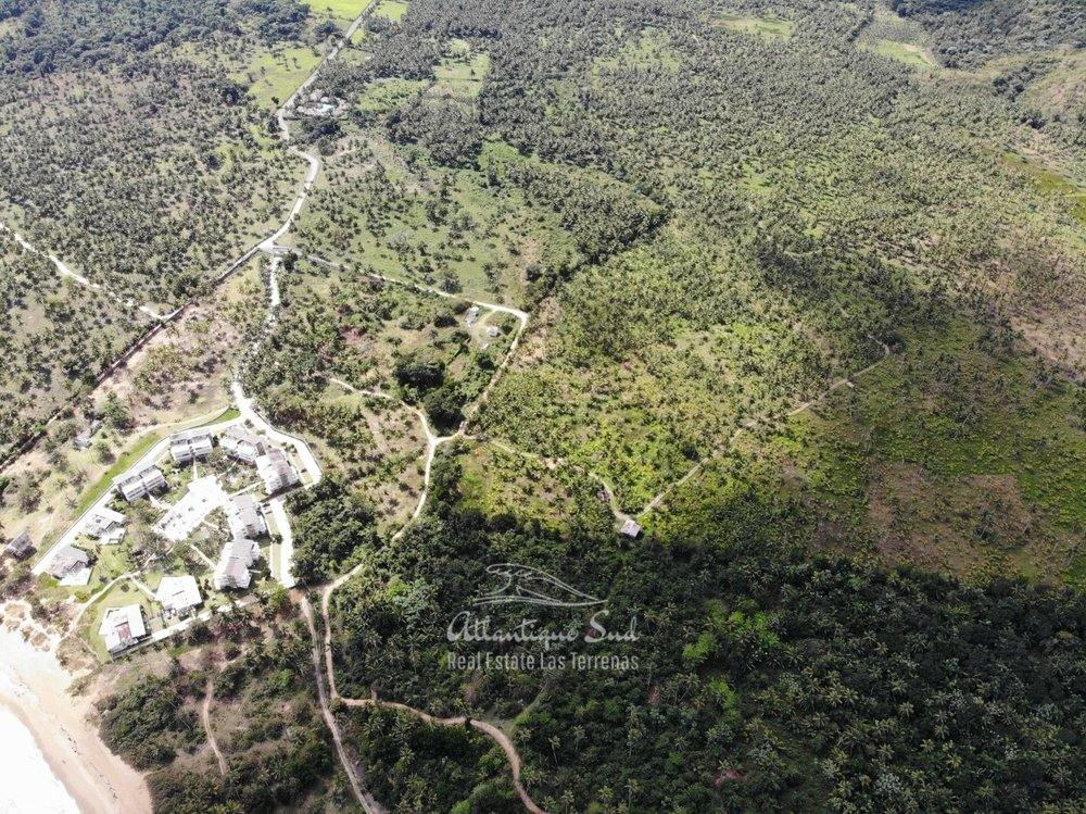 Land for sale El Limon Las Terrenas DR 11.jpeg
