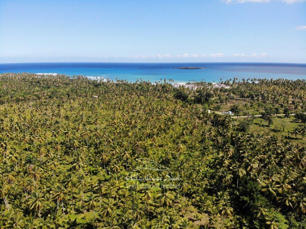 Land for sale El Limon Las Terrenas DR 25.jpeg