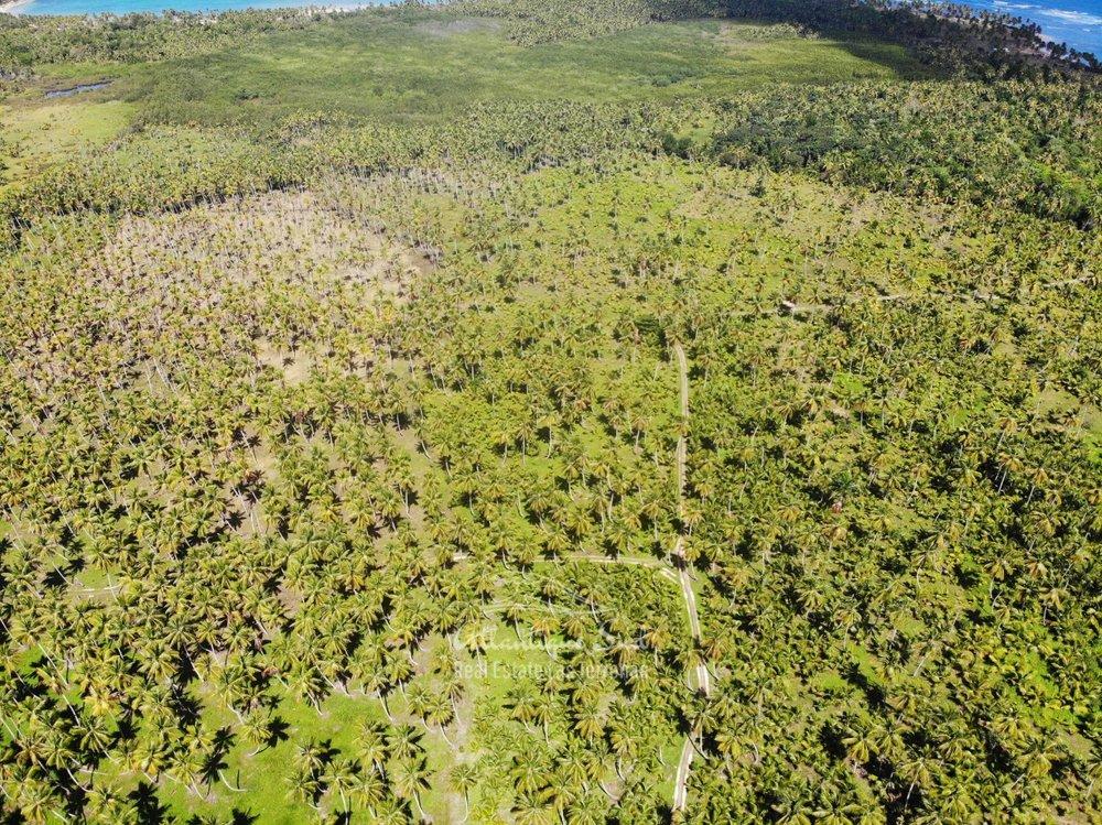 Land for sale El Limon Las Terrenas DR 35.jpeg