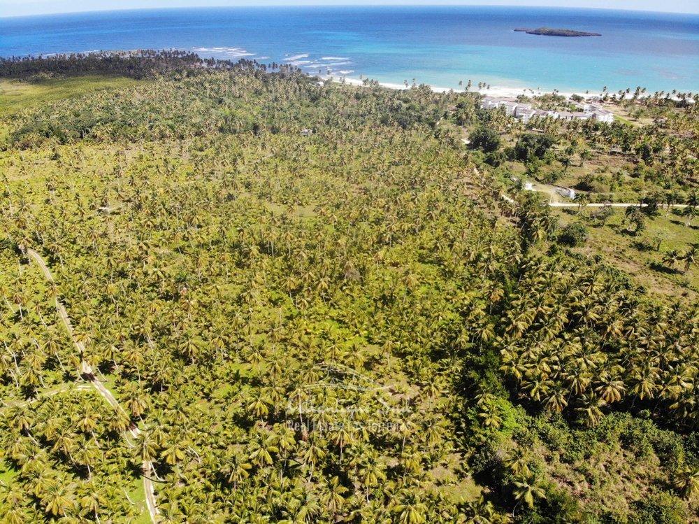 Land for sale El Limon Las Terrenas DR 37.jpeg