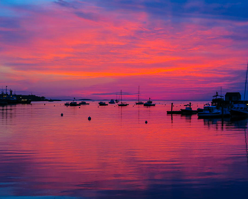 Rockland harbor pink and purple_1000.jpg