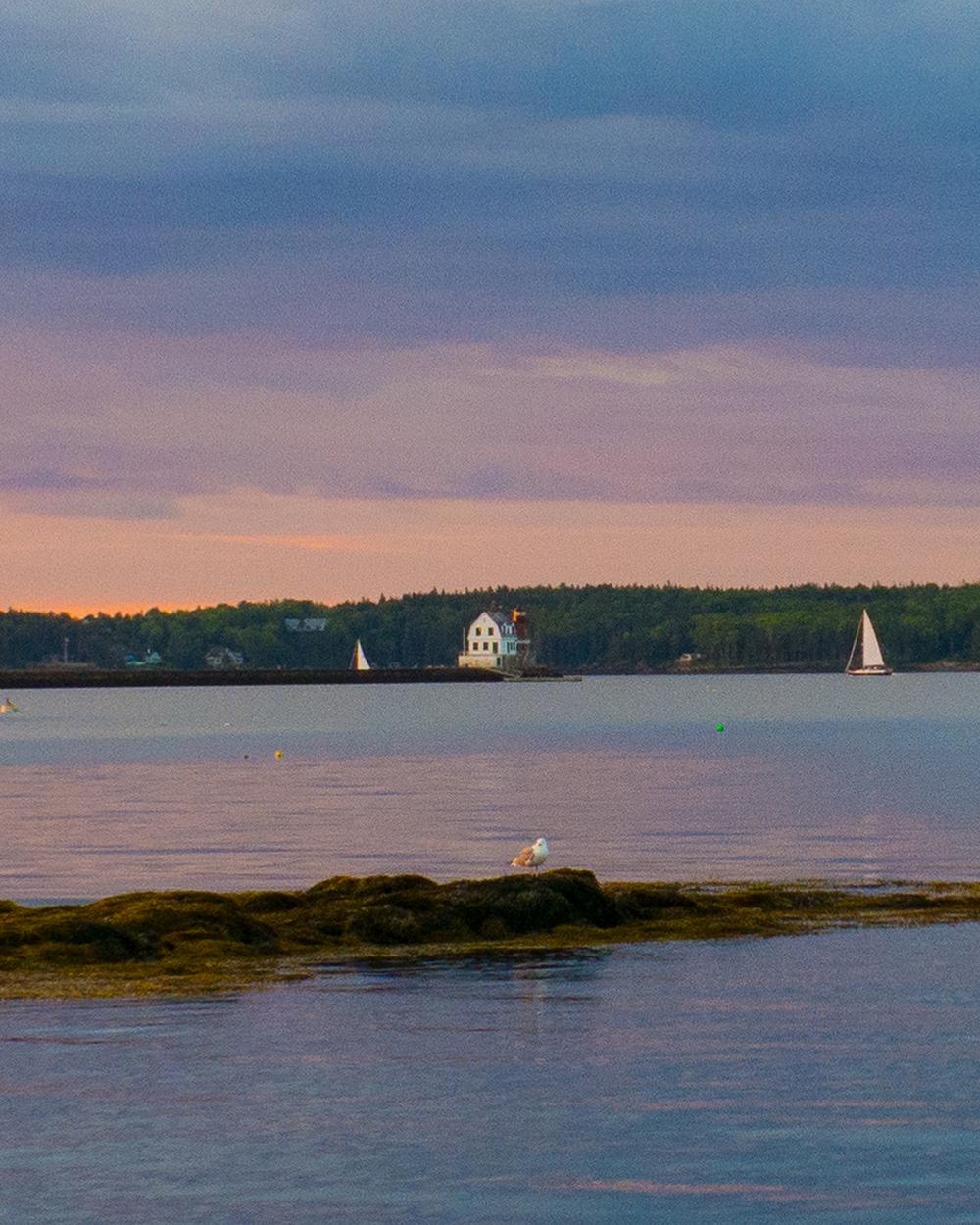 Rockland Breakwater&2 sails_1000.jpg