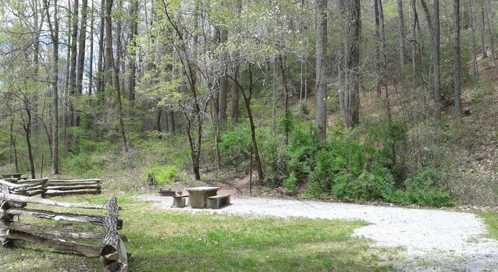 North-Mills-River-Campsite.jpg
