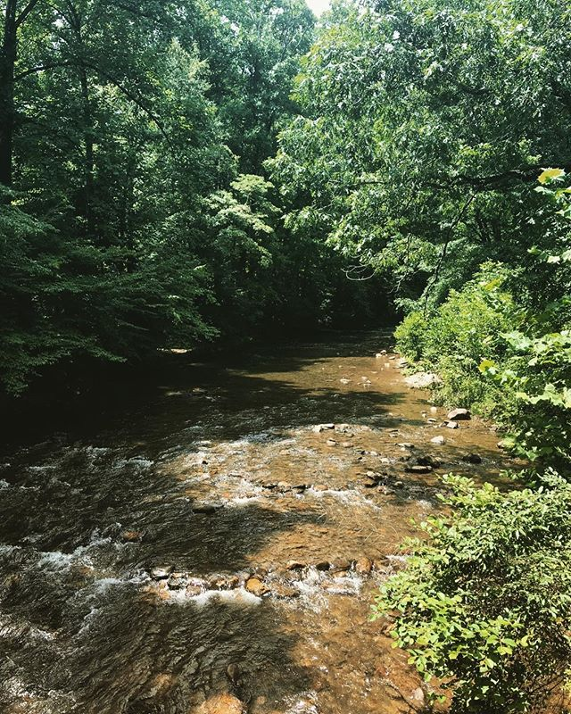 """There's something about rushing water that I can watch for hours and feel as if I need to do nothing more. It's alive in a way that's greater than any description of it...""⠀ ― Mark Helprin, In Sunlight and in Shadow⠀ ⠀ #water #river #beauty #getoutside #outdoors #davidsonriver #davidsonrivercampground #brevard #camping #tubing #summer"