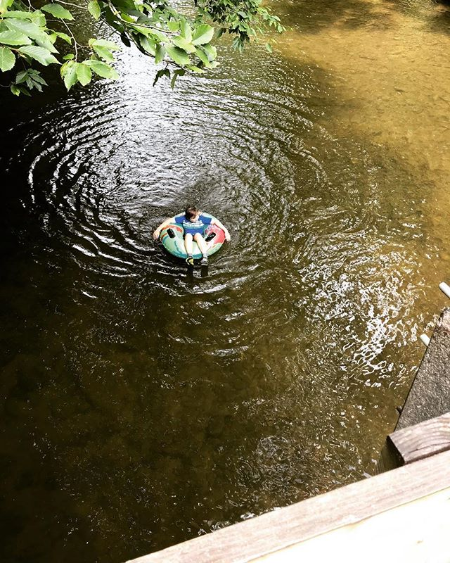 #TBT to days of summer tubing down the Davidson River⠀ ⠀ #floating #tubing #summertime #davidsonriver #justkeepswimming #camping #bringbacksummer