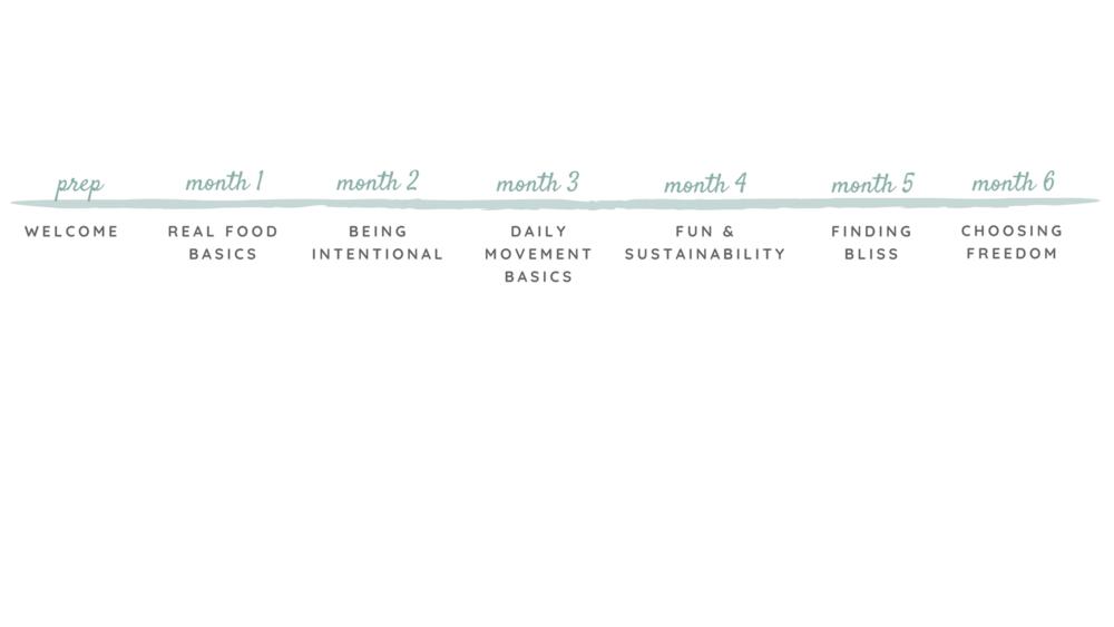 timeline horizontal-6.png