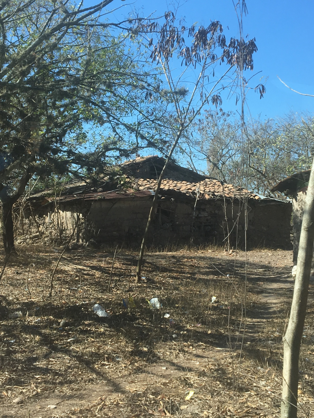 HeadStrong Photo - Honduran house.png