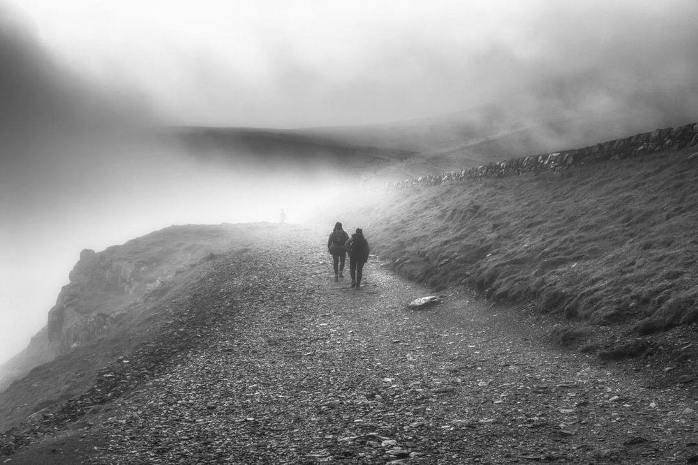 Misty Walkers