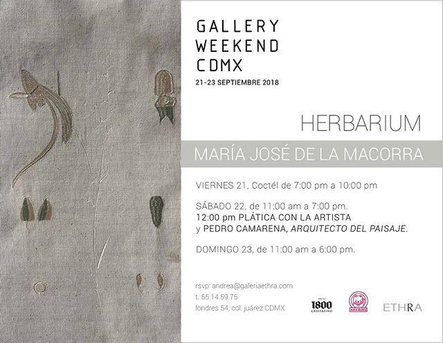 """Es Gallery Weekend y nosotros vamos a hacer un """"Pop Up"""" en Galería Ethra este fin de semana. Nos vemos en Londres 54, Col Juárez. Vamos a llevar recetas nuevas 😀  @galeriaethra  #galleryweekendmexico #coloniajuarez"""