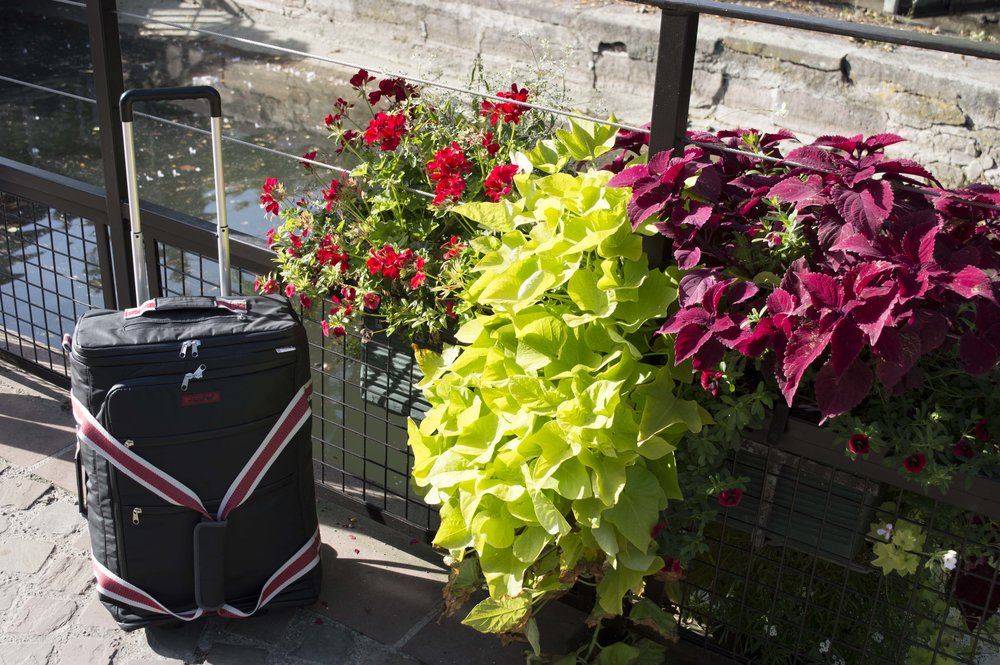 Greetings from JamPac® at Le Petite Venise, Colmar! The elastic back channel accommodates any travel trolley in general but our very own lightest Trollite, in particular.