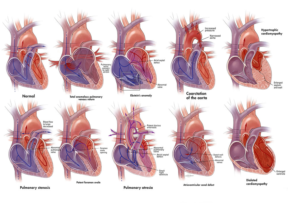 C_Hearts.jpg