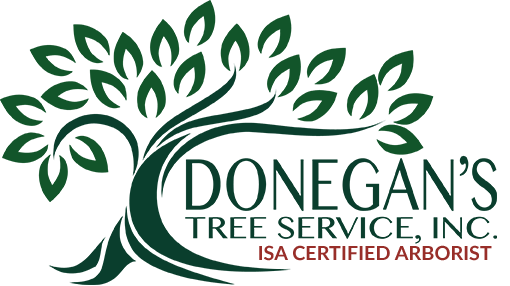 Donegan's Tree Service