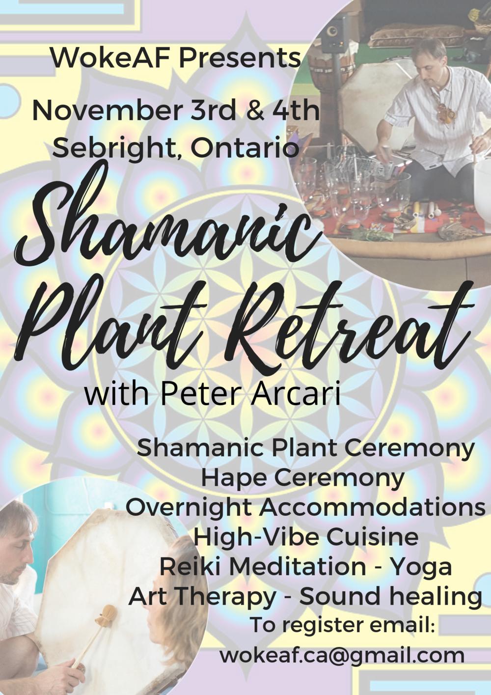 shamanicplantretreat (4).png