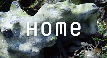 tentacular-home-button.jpg