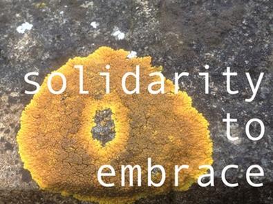 tentacular-magazine-lichens.jpg