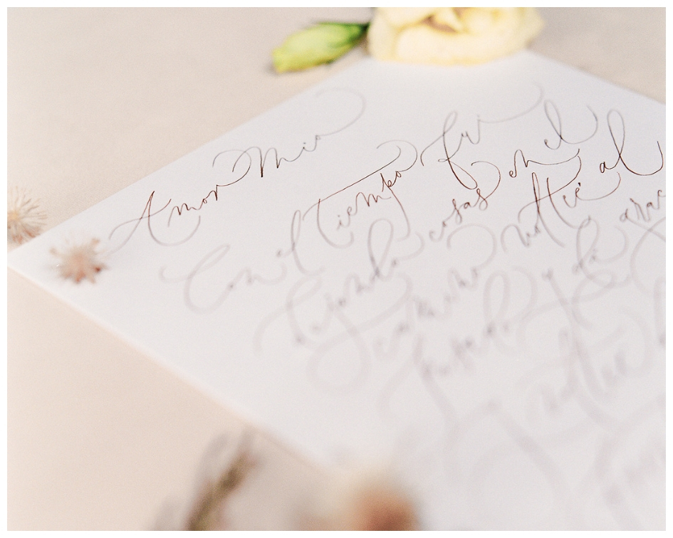 Modern Calligraphy Wedding.jpg