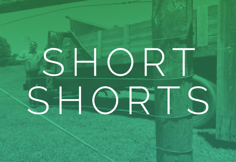 PMP-shows-shortshorts-thumb-web-v1.jpg
