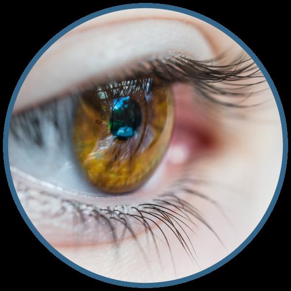 diana-reinhart-austin-tx-eye-movement-desensitization-reprocessing-emdr-therapist-embark-counseling.png